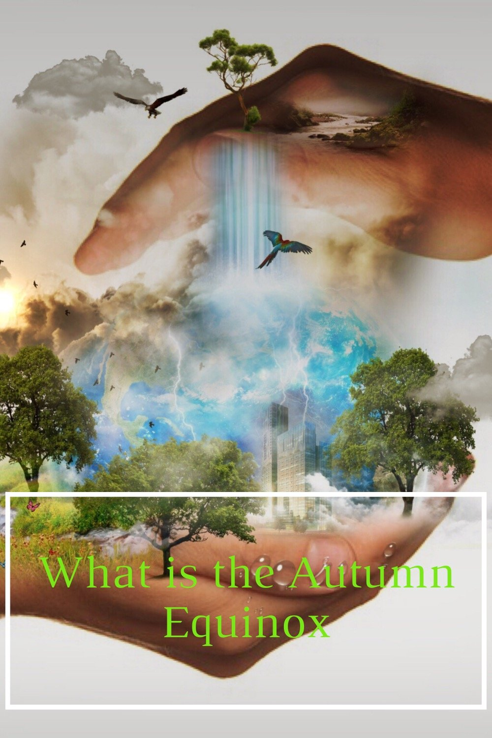 Two hands one above the other in a clasping motion with trees and other nature items which indicates nature